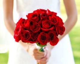 dozen-rose-red
