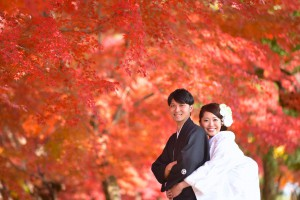 wedding-autnm